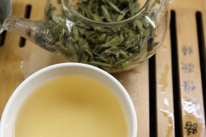 Xue ya snow bud white tea curious tea