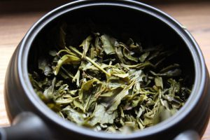 gopaldhara sencha curious tea tea adventures