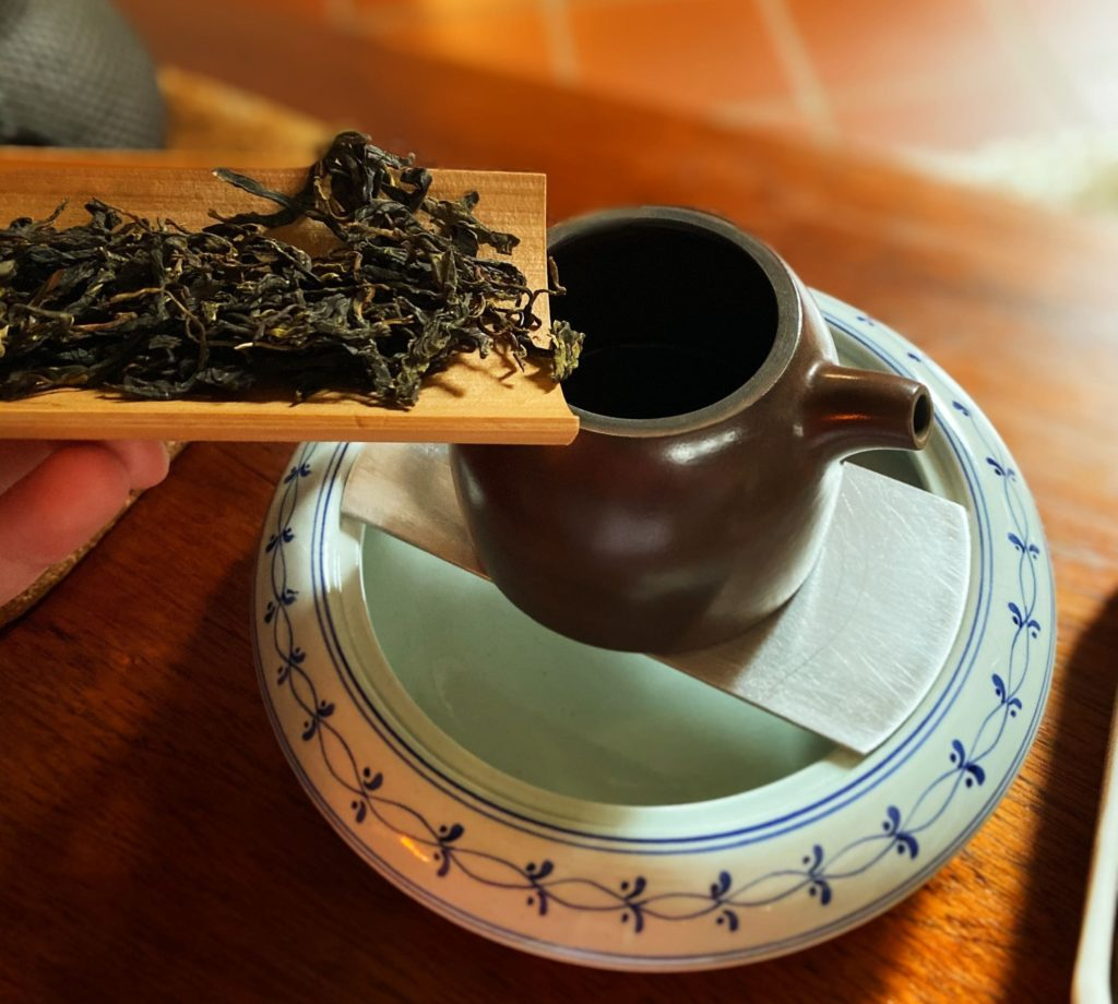 Bai Yin Shan Yesheng Tea Encounter Tea Adventures