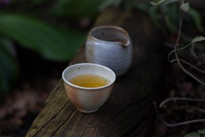 2019 Singularity Spring Gushu essence of tea Tea Adventures