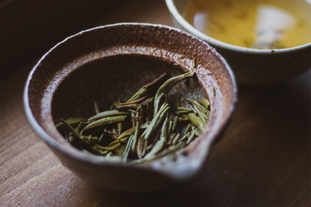 Guangxi Silver Needle Mei Leaf Tea Adventures