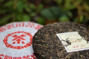 Buy Puerh Tea Tea Adventures