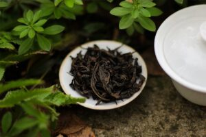 Da Hong Pao Teasenz Tea Adventures