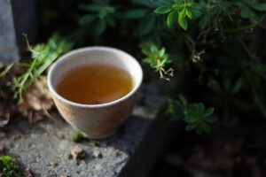 2020 Spring Hua Ji Dan Cong Essence of Tea Tea Adventures